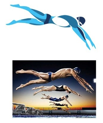 a look at the process of swimming The freestyle stroke is the fastest stroke in swimming and is a five-step process that requires practice swim the freestyle stoke with tips from a swimming .